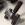 Lasergravur / Laserbeschriftung Werkzeug